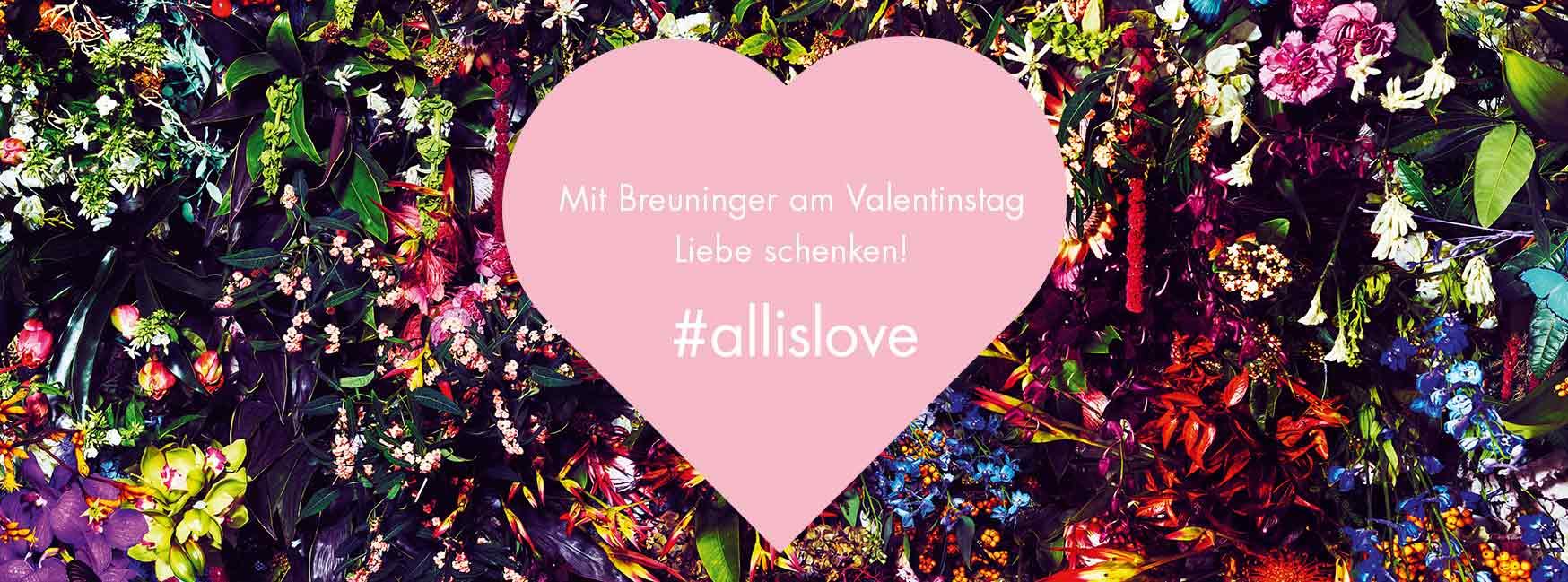Valentinstag #allislove